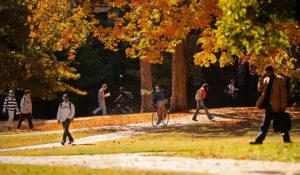 Visit Vanderbilt this Fall