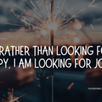 looking-for-joy-banner