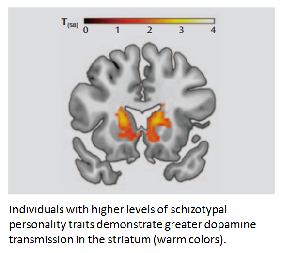 Woodward_AJP 2011_DA and schizotypal traits_2