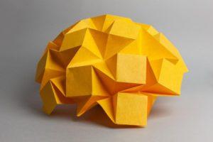 origami_brain