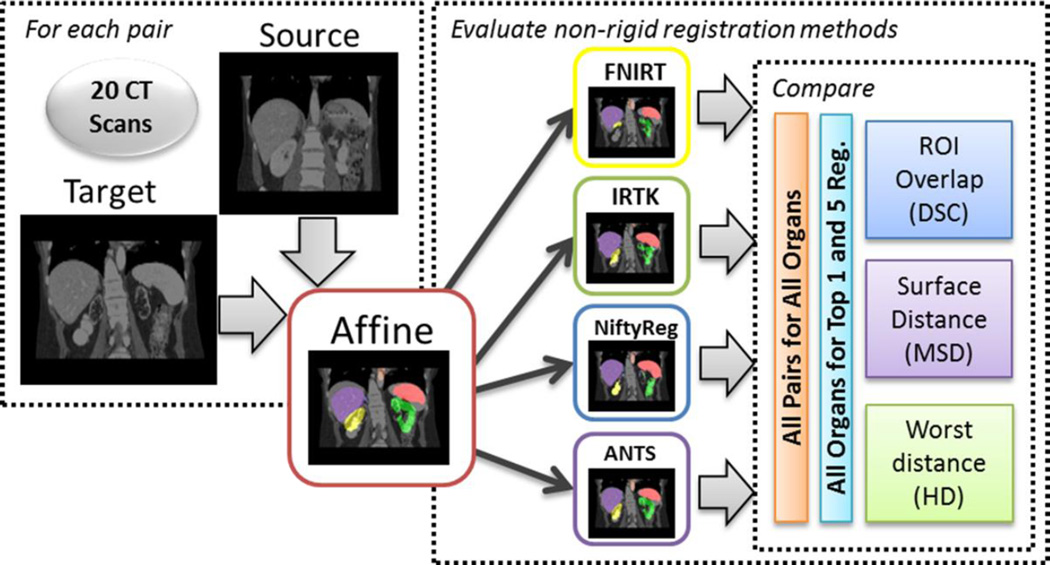 The proposed general pipeline for conducting registrations and followed by metric analyses. Initially, each of 20 CT scans were pairwise linear registered using affine IRTK. Using the linear registration as a baseline, the registrations went through four non-rigid registrations. The output non-rigid registrations are evaluated against the manual segmentation via the DSC overlap, mean surface distance, and Hausdorff distance for each organ of interest. The comparison of the four non-rigid registrations was first based on all pairs of inter-subject registrations for all organs. Then another round of comparison was applied to the top 1 and top 5 registrations selected retrospectively for each target CT scan.