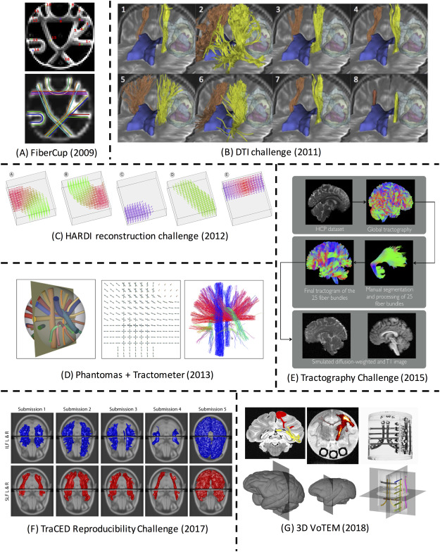 Fig. 1. Past challenges in fiber tractography. Detailed description of data, ground truth, and evaluation are described in the text. (A) FiberCup Phantom pathways with 16 ground truth bundles [21]. (B) Eight example CST reconstructions from the DTI Challenge [23]. (C) Synthetic fiber fields from the HARDI Reconstruction Challenge [26]. (D) Phantomas [27] dataset for Tractometer evaluation [28]. (E) Creation of simulated in vivo human dataset for the ISMRM Tractography Challenge [29]. (F) Example submissions from the TraCED Reproducibility Challenge for two white matter pathways. (G) 3D-VoTEM ground truths defined on the macaque, squirrel monkey, and phantom (from left to right).