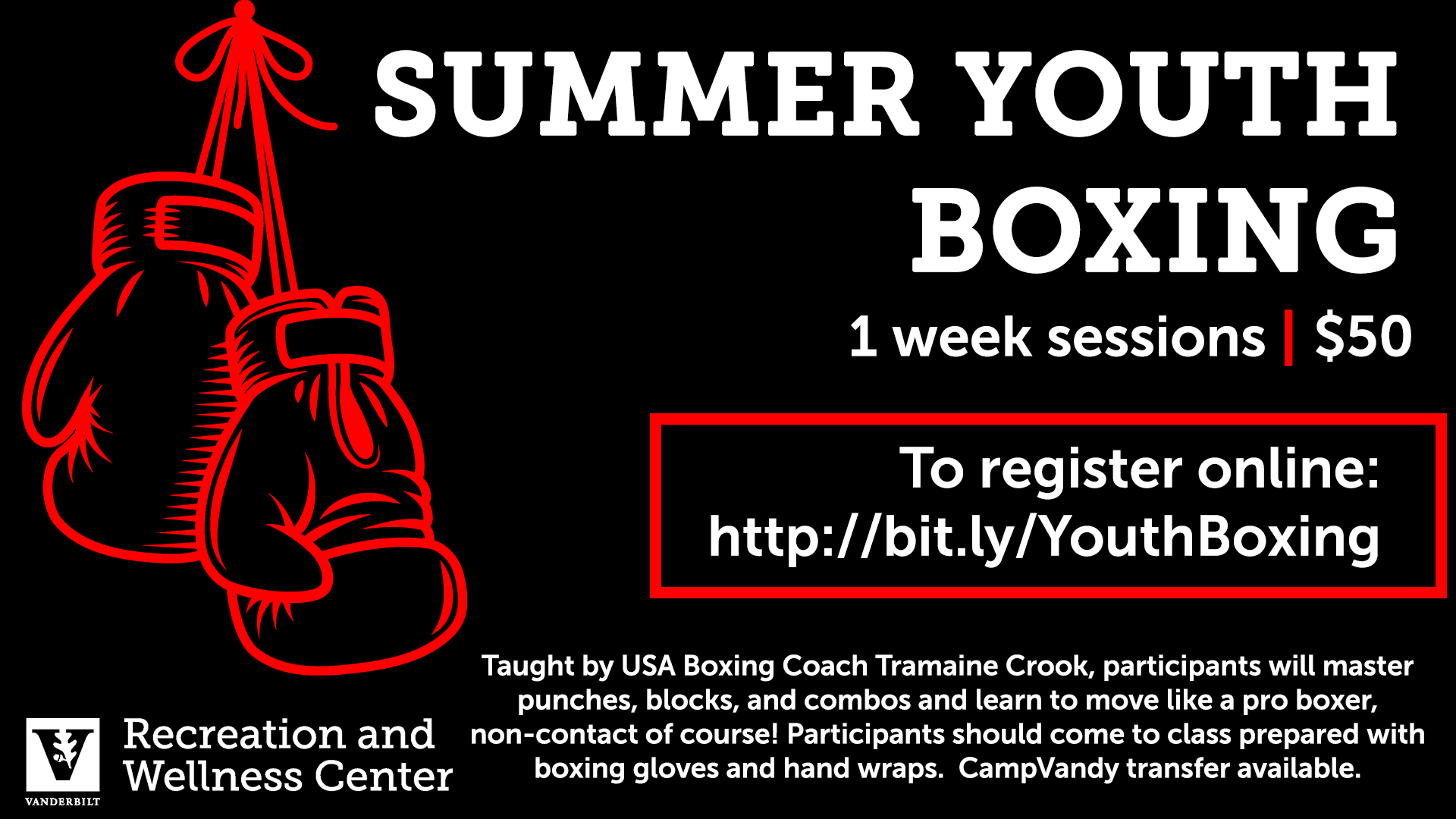 Vanderbilt Summer Youth Boxing Classes