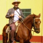 sok_horse