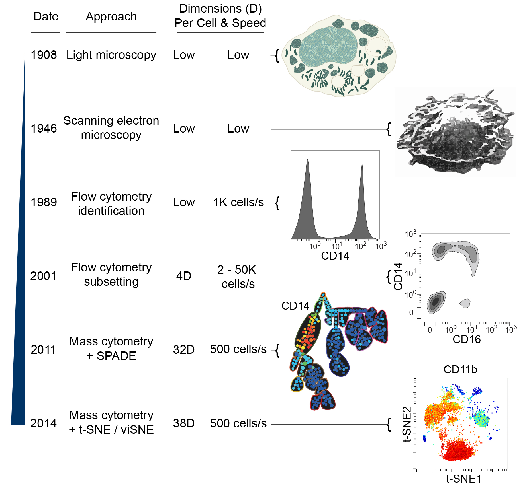 Roussel et al - 2016 Handbook of Human Innate Immunity - Dissecting Complex Cellular Systems with High Dimensional Single Cell Mass Cytometry