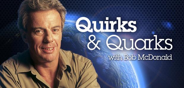 620x296-QuirksQuarks