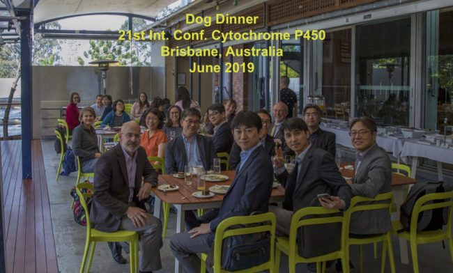 ICCP450-2019-FPG-GroupDogLunch
