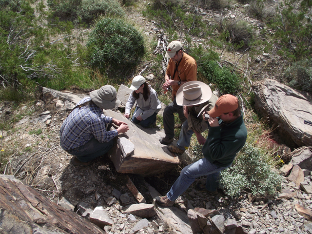 Collaborative field geology