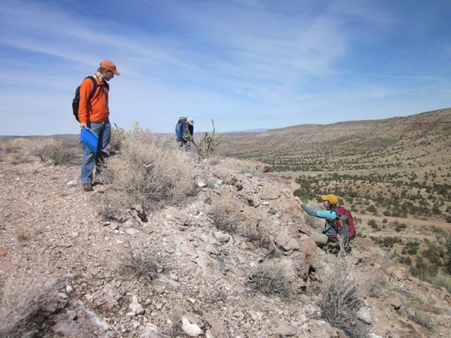 Examining an outcrop of the Peach Spring Tuff