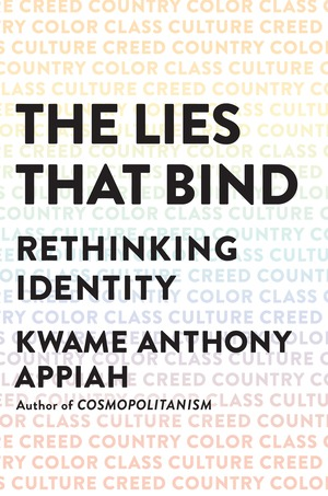 book jacket for 'The Lies That Bind'