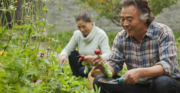 Senior East Asian couple in garden
