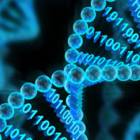 DNA molecules constructed with binary code