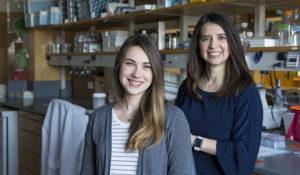 Rasmussen named Vanderbilt Prize Student Scholar