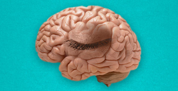 Mind's eye blink' proves 'paying attention' is not just a