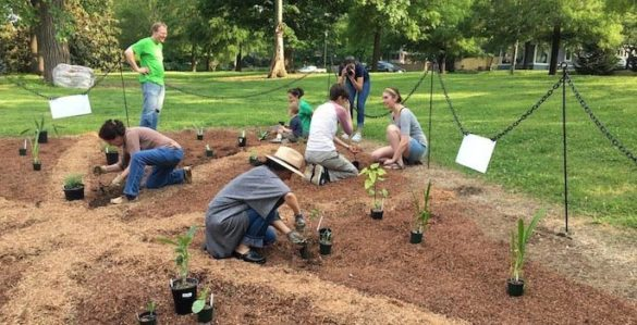 Center for Latin American Studies Director Ted Fischer supervises the planting of Vanderbilt's Latin American Garden. (CLAS/Vanderbilt University)