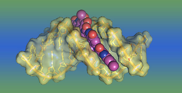 image of molecule with toxin attached to it