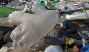 Message in a Bottle: Reduce, Reuse, Recycle—and Refuse