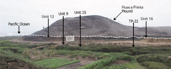 Photo of mound with dig sites indicated by arrows
