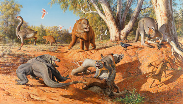 Several large lizards and mammals squaring up for a fight in a dry desert setting