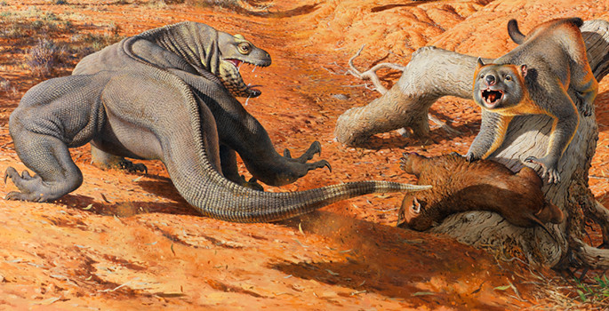 Illustration of giant lizard fighting off a giant bear-like marsupial