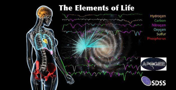 diagram showing the elements of life