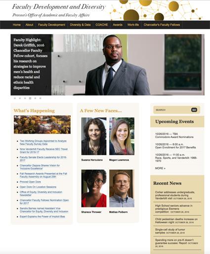 faculty_development_diversity_website