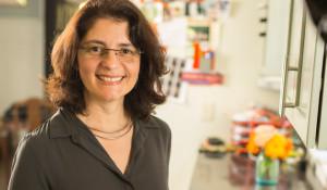 New faculty: Suzana Herculano-Houzel examines the evolution of the brain