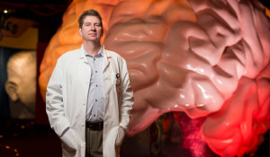 New faculty: David Sweatt studies how brain chemistry affects learning and memory