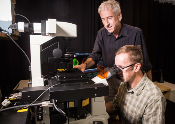 Ian Macara, chair of Cell and Developmental Biology, and Matt Tyska, professor of cell and developmental biology and director of the Cell Imaging Shared Resource Center of Excellence Microscopy Lab. (Susan Urmy/Vanderbilt)