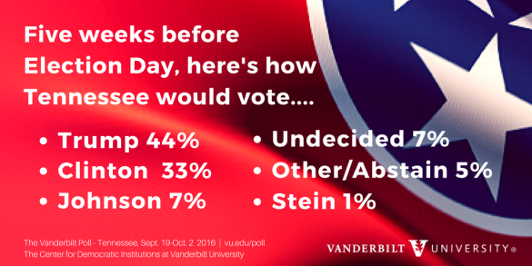 infographic showing voter preferences