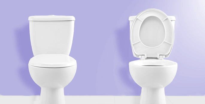 two toilets, one with lid up, one with lid down
