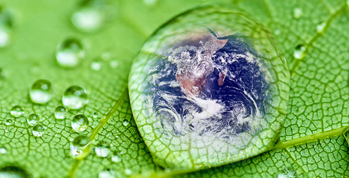 earth in drop of water on a leaf