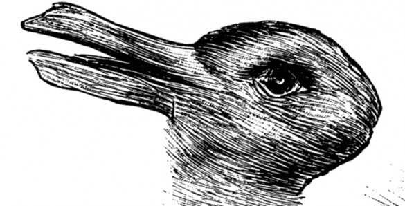 ambiguous image of rabbit that could also appear to be a duck