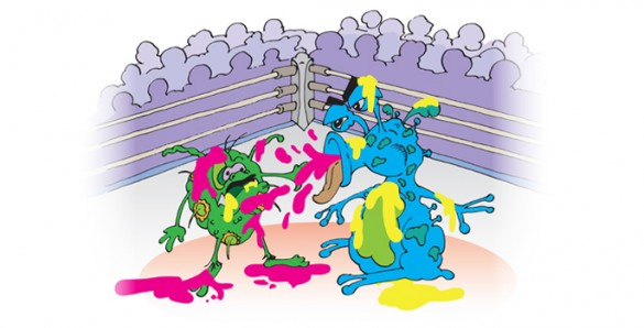 cartoon bacteria fight club
