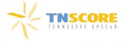 TN SCORE logo