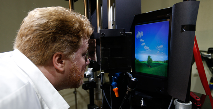 Maier looking at computer with image on screen