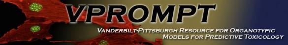 VPROMPT logo