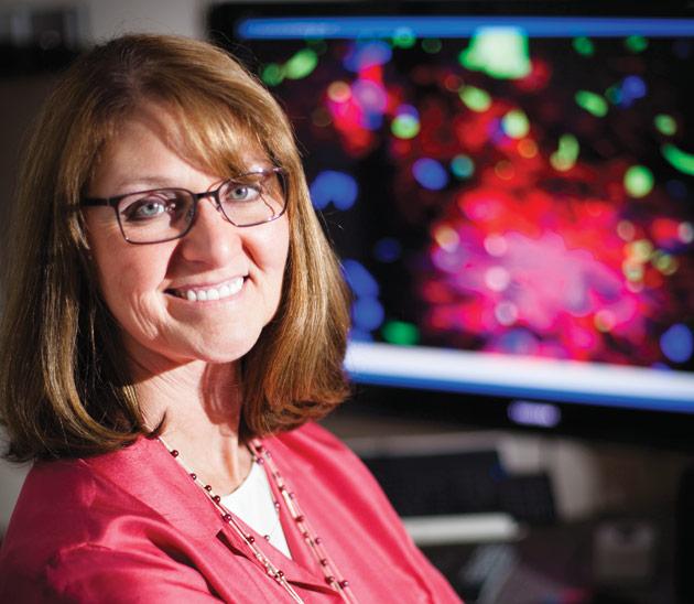 Laura Dugan, Abram C. Shmerling, M.D. Professor of Alzheimer's and Geriatric Medicine