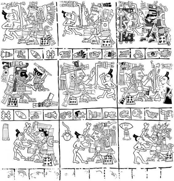Birth almanac illustration