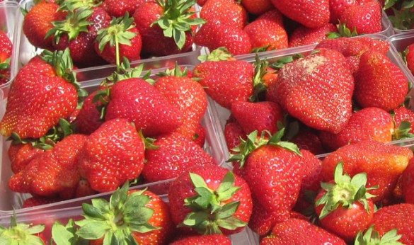 Strawberries are just ending their peak season. Photographed at West Nashville Farmer's Market. (Joan Brasher/Vanderbilt)