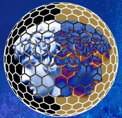 Janus Nanoparticle