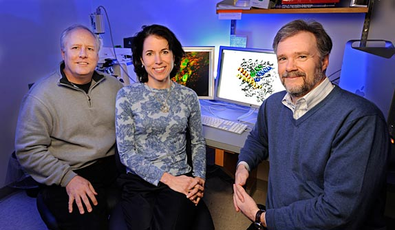 Randy Blakely, Tammy Jessen, Douglas McMahon and colleagues developed a mouse model that does not respond to serotonin blockers such as antidepressants. (John Russell / Vanderbilt)