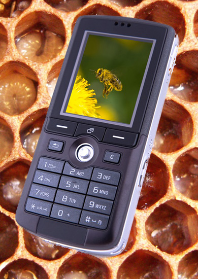 Cell phone with bee & hive