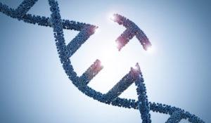 Vanderbilt-led team discovers new genetic disease and defines underlying mechanism