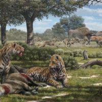 Illustration of La Brea carnivores