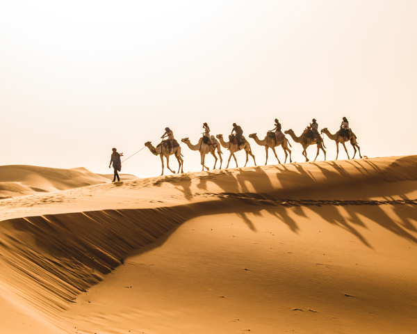 """Camel Caravan in the Sahara"" by John Valin"