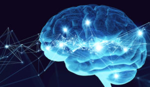 Vanderbilt neuroscientists uncover a novel means of interneuronal communication using extracellular vesicles
