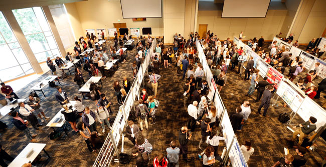 Photo for Sixth annual Undergraduate Research Fair showcases immersion, draws record number of participants