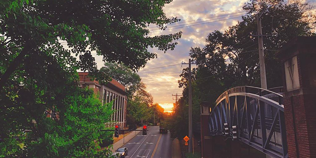 Our favorite #vandygram