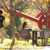 Students hang out on the plaza near Ingram Studio Arts building amid fall colors.(John Russell/Vanderbilt University)